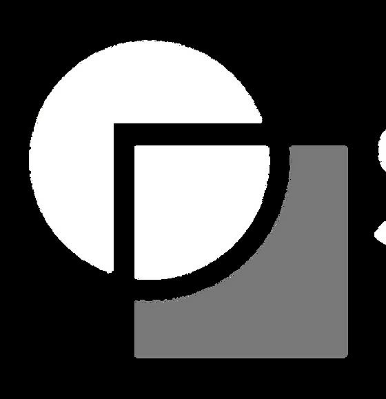 logo white alpha cinza_edited.png
