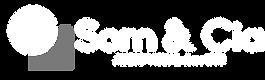 logo white alpha cinza.png