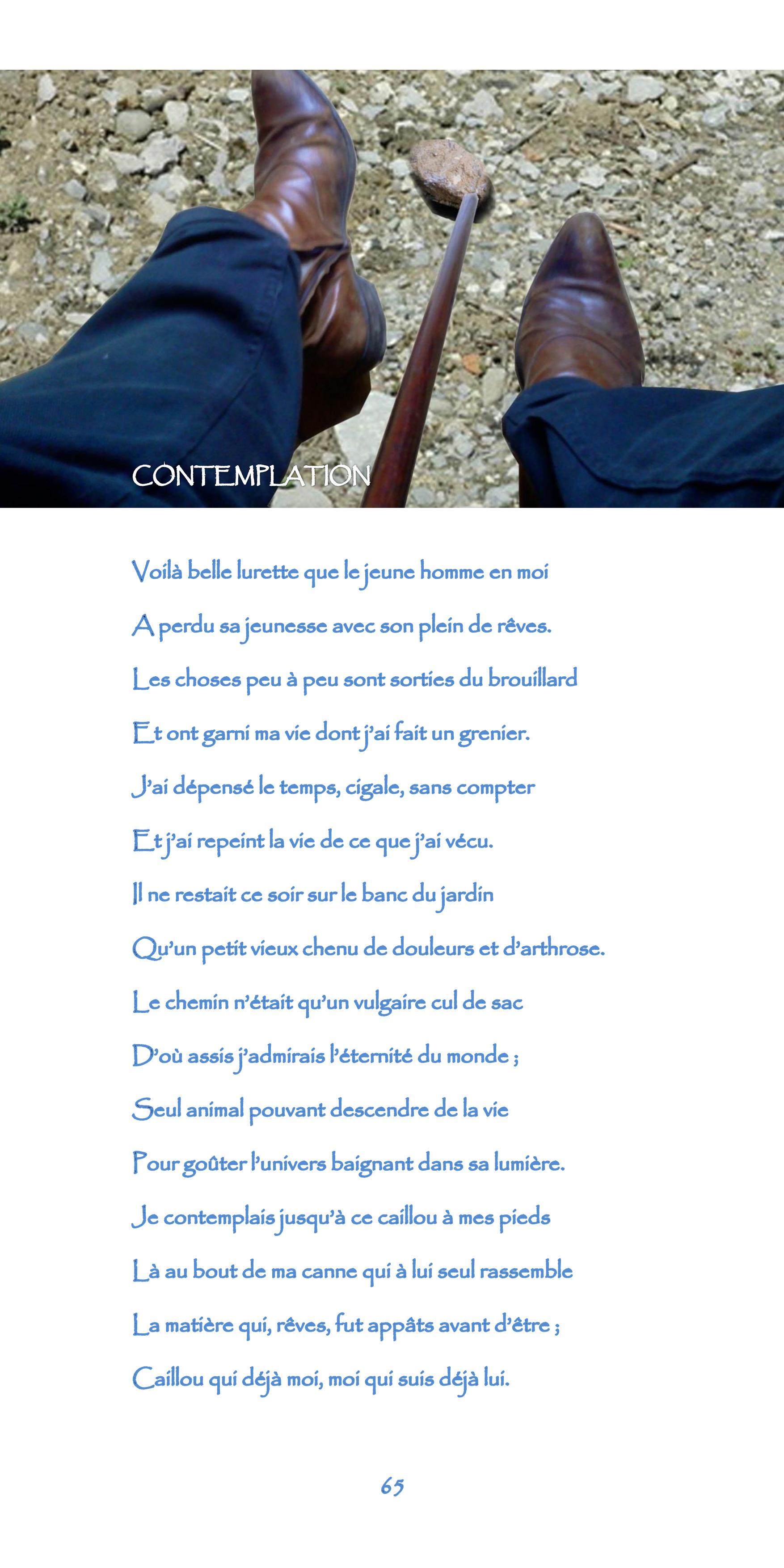 65-nègre_bleu-contemplation.jpg