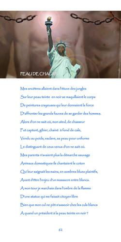 62-nègre_bleu-peau_de_chagrin.jpg