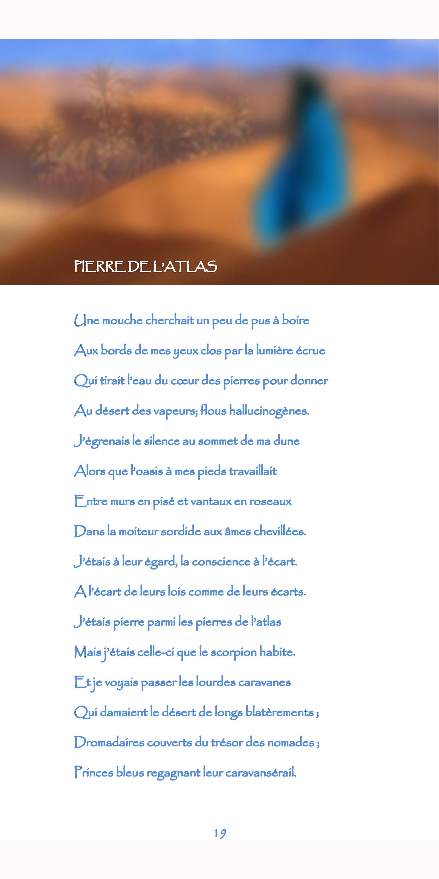 19-nègre bleu-pierre de l'Atlas.jpg