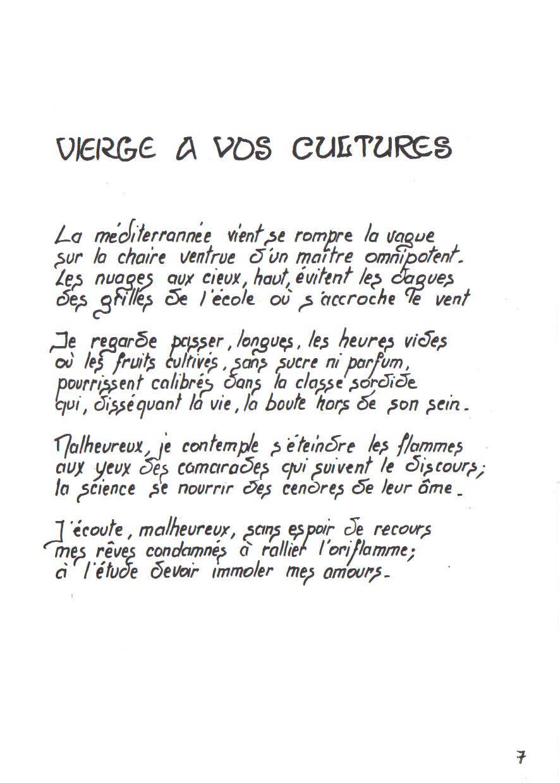 07-vierge_à_vos_cultures.jpg