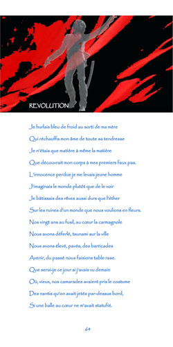 64-nègre bleu-révolution.jpg