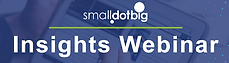 SmallDotBig Insights Webinar.png