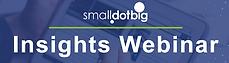 SmallDotBig Insights Webinar.png