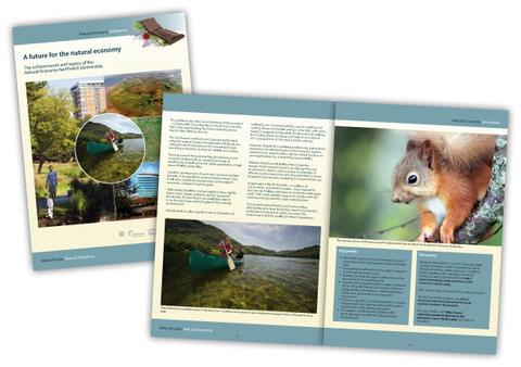 Natural Economy Northwest Booklet Design