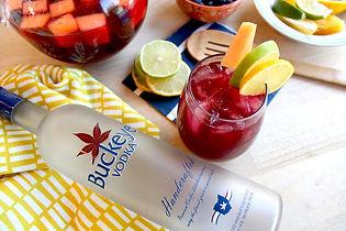 buckeye-vodka-summer-sangria-cocktail.jp