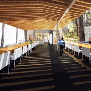 Concept Rendering, Point Lobos CA