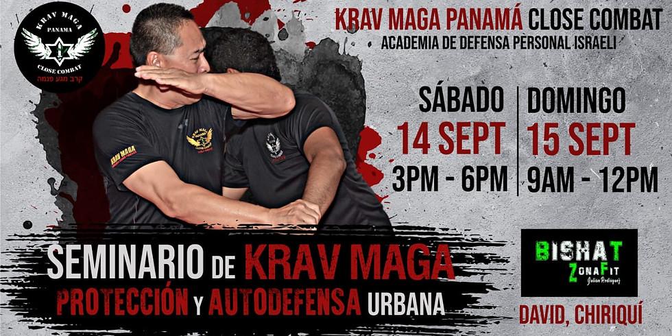 Seminario de Krav Maga - Protección y Auto Defensa