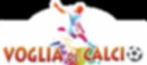 Logo Voglia di Calcio