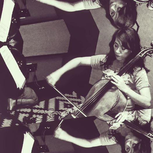 Cello in Prism - Carol Ann