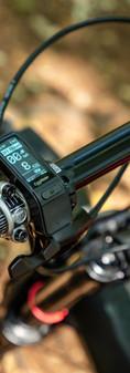 Bike Check-39.jpg