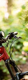 Bike Check-55.jpg