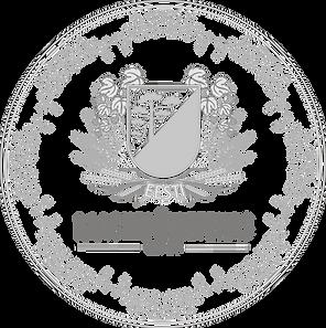 Logo grey medal.png