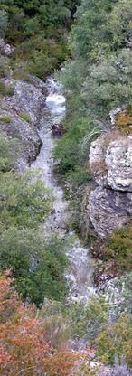 Rivière Le Fil en amont du Pont de l'Oule.jpg
