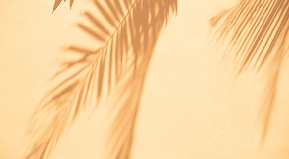 abstract-background-of-shadows-palm-leav