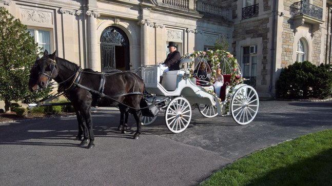 Fairy tale wedding in the Cinderella Carriage