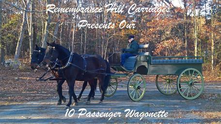 10 Passenger Wagonette
