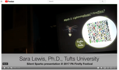 Screenshot of Sara Lewis' video presentation