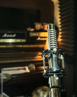 Classic Passive Ribbion Microphone