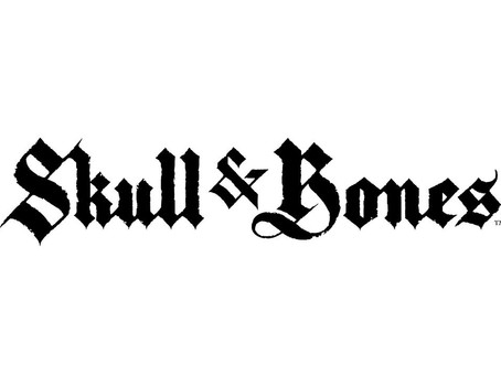 An Update on Skull & Bones
