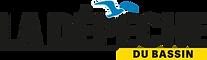 logo-depeche-300x87.png