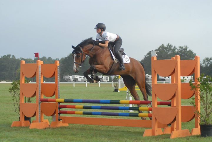 Baloumerang SV in his first class as a 4 year old, we may have decided to not jump a few jumps, but he tried his best!