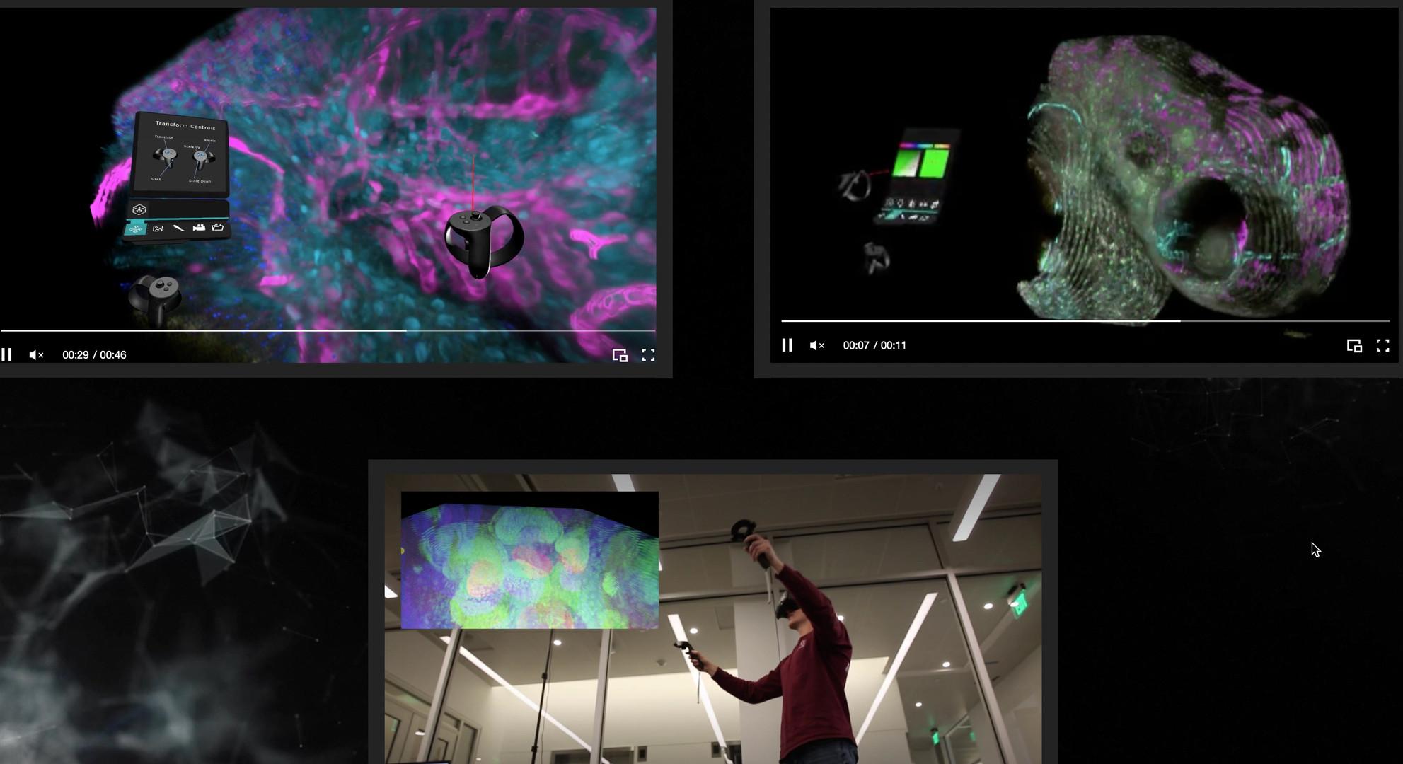 Microscape for Catalina Demo