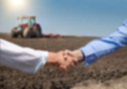 Two businessmen shaking hands in field w