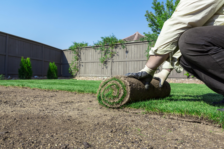 Sod & Grass Installation