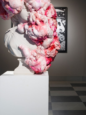 Marina Vargas - intallation view