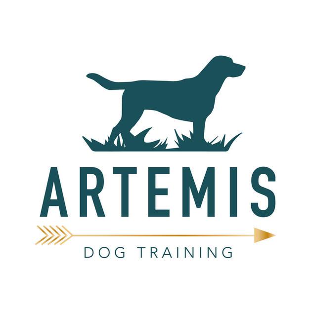 Artemis Dog Training