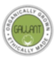 GALLANT INTERNATIONAL INC