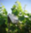 télégestion agricole solution vinicole