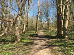 Playford Walks