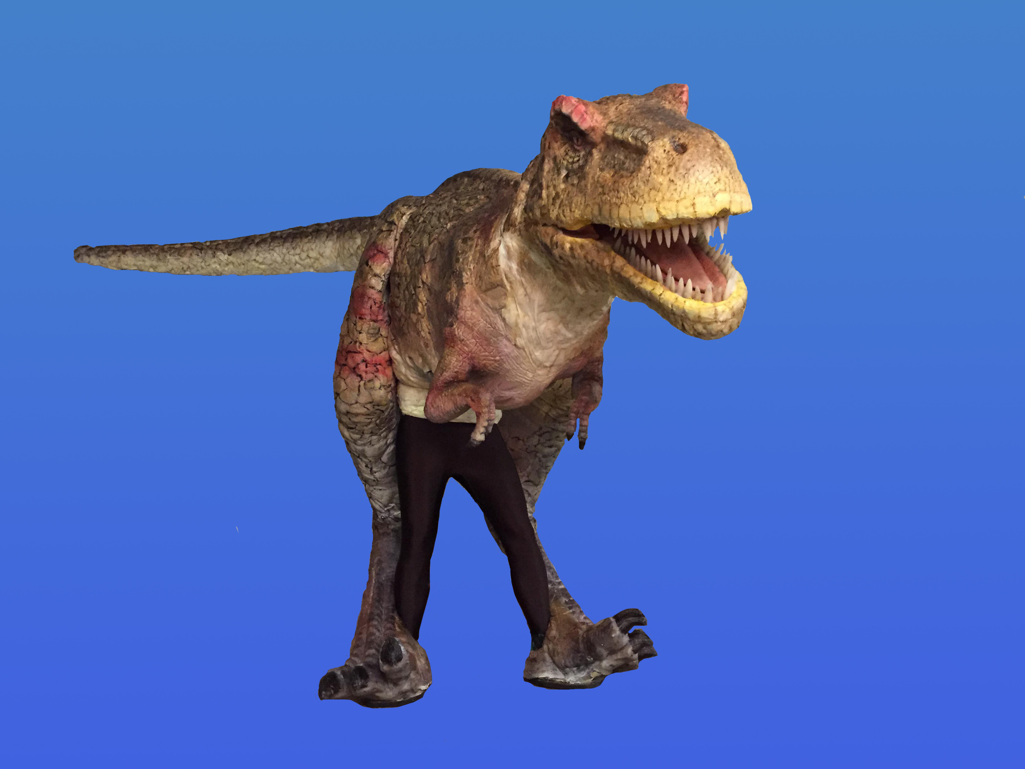 dinosaur costume blue background
