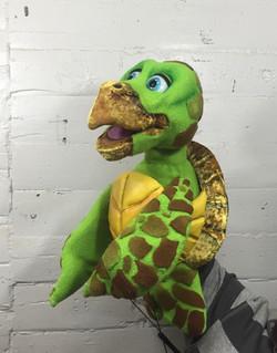 11 Loggerhead Turtle