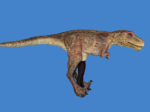 dinosaur costume profile blue background