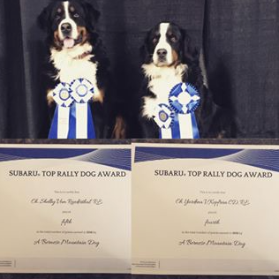 Shelby and Yardena placing top 5 in Canada for Rally Obedience