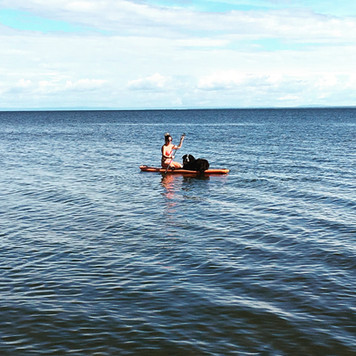 Paddle board rides