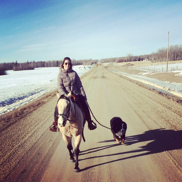 Vito on a trail ride but on leash until he has a reliable recall. There are too many hazards with cars flying by.