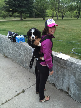 Getting Vito used to his carrier before our hike in Tumbler Ridge