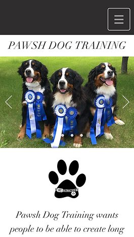 Pawsh Dog Training  Home.png