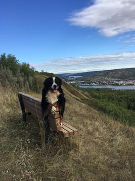 Vito hiking