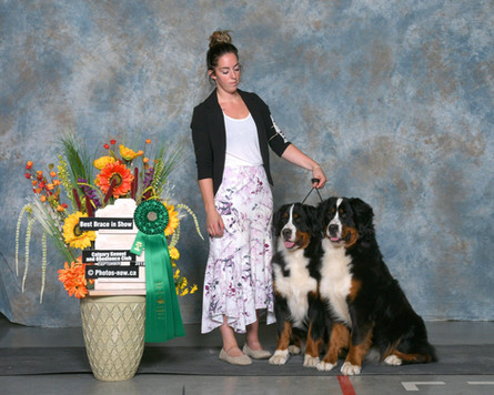 Abby and Lizzy - Best Brace in show