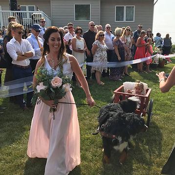 Joy and Kaiser pulling Amora in wedding
