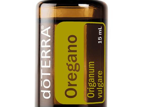 Usos Comunes  y Beneficios del Orégano doTERRA