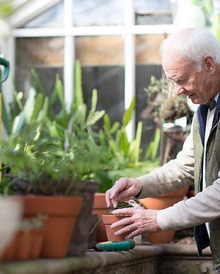 Personnes âgées qui plante