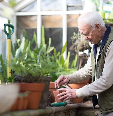 Planting a Plant, ARC Angels Homecare