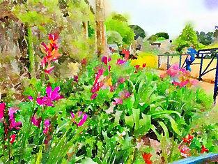 Garden%20at%20tulip%20farm_edited.jpg